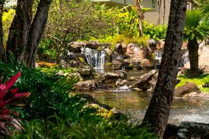 lihhi-waterfall-0131-hor-clsc